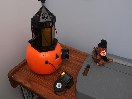 Pumpkin camera with flash and remote control