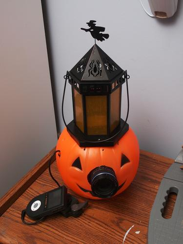 Pumpkin Camera